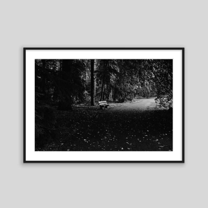 Bench Print in Frame